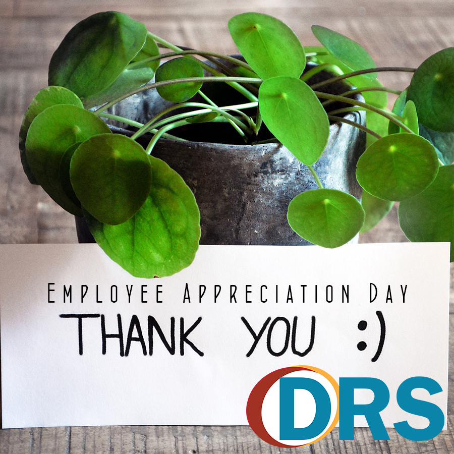 A small potted plant with a card in front that reads:  Employee Appreciation Day Thank you. DRS logo.